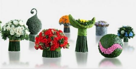 Стабилизированные цветы и растения